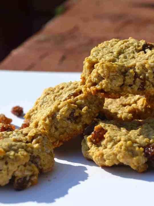 Sugar-Free, Low-Fat, Low-Carb, Mini Oatmeal Raisin Cookies!