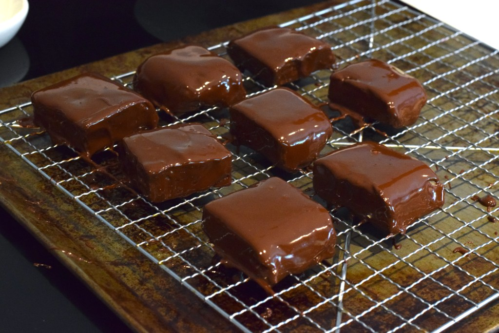 chocolate covered peanut butter low carb squares