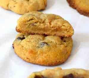 keto psyllium husk chocolate chip cookies