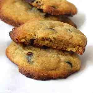 keto vital wheat gluten chocolate chip cookies recipe