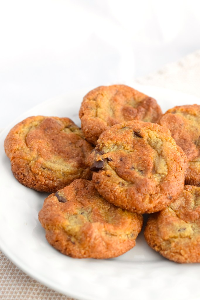 chewy low carb chocolate chip cookie recipe