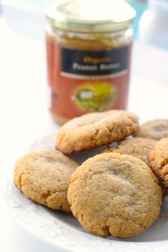 low carb chewy peanut butter cookies